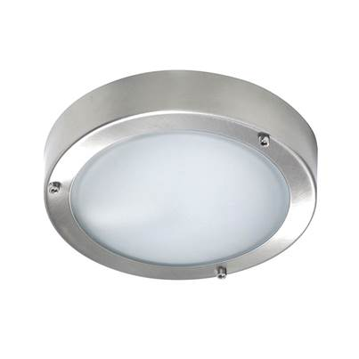 Byron Stainless Steel Wall/Ceiling Outdoor Light